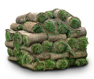 Rolls of grass Stock Image