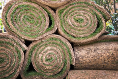 Rolls of grass Stock Images