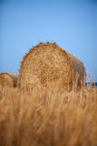 Rolls of hay Stock Photography