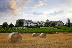 Rolls of Hay. A couple of rolls of hay in some farmland of Morges, Switzerland Stock Photo