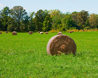 Rolls of hay Royalty Free Stock Images