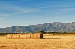 Rolls of hay against mountains. Stock Images