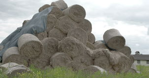 The rolls of hay balls in the field FS700 4K RAW Odyssey 7Q Stock Photography