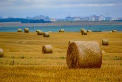 Rolls of hay on the field. autumn stock photo