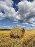 Rolls of hay on the field after harvest. poland Royalty Free Stock Photography
