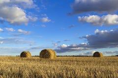 Rolls of hay in field Stock Photos