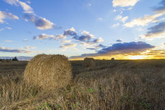 Rolls of hay in field at sunset Stock Photo