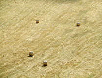 Rolls of hay on the field Stock Photo