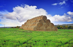 Rolls of hay stacked in a stack on the field against the blue sky Stock Photo
