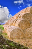 Rolls of hay stacked in a stack on the field against the blue sky Stock Image