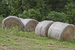 Rolls of Hay Royalty Free Stock Photography