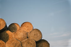 Rolls of haystacks on the field. Summer farm scenery with haystack on the Backgr Royalty Free Stock Photos