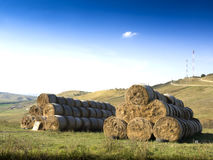 Rolls of haystacks on the field. Stock Photos