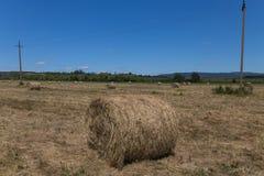 Rolls of haystacks. Novorossiysk, Russia, Krasnodarskiy Kray. 04.06.2017. Rolls of haystacks. Novorossiysk, Russia, Krasnodarskiy Kray Stock Photo