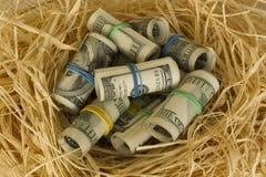 Rolls of hundred US dollar bill laying in bird nest . Concept of retirement nest egg or savings stock photo