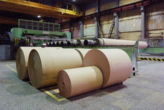 Rolls of kraft paper. In the workshop Royalty Free Stock Photos