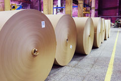 Rolls of kraft paper. In the workshop Stock Images