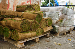 Rolls of lawn turf Royalty Free Stock Photo