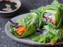 Rolls from lettuce leaf with vegetables and rice noodles and soy sauce with sesame. Vegetarian and vegan rolls with lettuce, carro. Ts, red cabbage, rice noodles royalty free stock photos