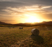 Rolls Of Hay At The Sunset Stock Images