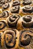Rolls with poppy. Sweet rolls with a poppy Royalty Free Stock Photos