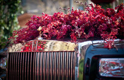 Rolls Royce Fotografía de archivo