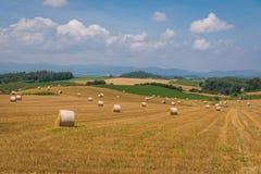 Rolls rurale del fieno dell'Hokkaido fotografie stock libere da diritti