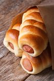 Rolls with sausage closeup wrapped in paper vertical Stock Images