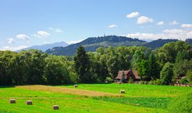 Rolls of slanted hay in the field and small rural house Royalty Free Stock Photography