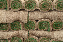 Rolls of sod. Close up of Rolled up sod Stock Images