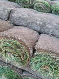 Rolls of sod grass and dirt. Landscapers you side to replace a lawn. These rolls of sod on a pallet are used for landscaping installation in our a material for Royalty Free Stock Images