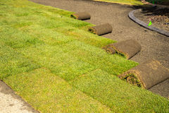 Rolls of sod - installation. Installation of sod on private property front lawn royalty free stock photos
