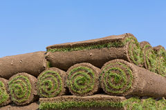 Rolls of sod stock photography