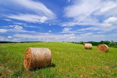Rolls of straw on the field Stock Image
