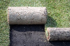 ROLLS OF TURF - LAWN Royalty Free Stock Images