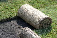 ROLLS OF TURF - LAWN. Renew grass with carpet grass tehnology royalty free stock photography