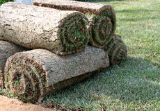 ROLLS OF TURF - LAWN Stock Photos