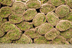 Rolls of turf Stock Photography