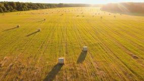 Rolls von Heuschobern auf dem Feld stock footage
