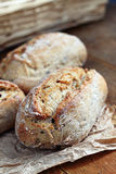 Rolls whole grain. Close up of healthy wholegrain crispy bread Royalty Free Stock Image