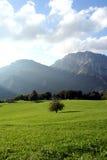 rolna ekologii góra Obrazy Royalty Free