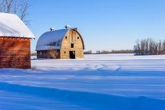 Rolna stajnia w zimie, wiejski Alberta Obrazy Stock