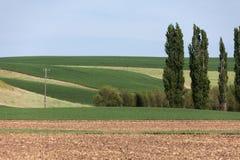 Rolna ziemia Zdjęcia Royalty Free