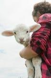 rolnej dziewczyny baranek Fotografia Royalty Free