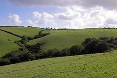 rolnej zieleni ziemi wiejski nieba widok Obrazy Stock