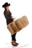 Rolni obowiązki domowe obraz stock