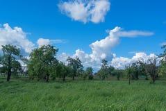 Rolni pola Kłama ugory zdjęcia royalty free