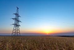 Rolni pszeniczni pola przy wschodem słońca Fotografia Stock