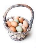 Rolni świezi jajka w koszu Fotografia Stock