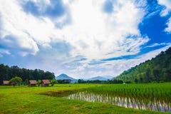 Rolnictwa gospodarstwo rolne Zdjęcia Royalty Free
